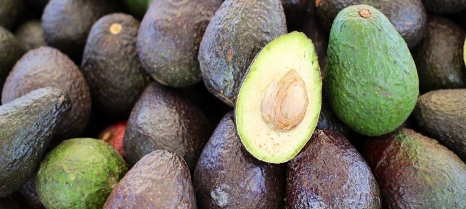 Israel, Kenia And Peru: The Leading Avocado Suppliers To Russia