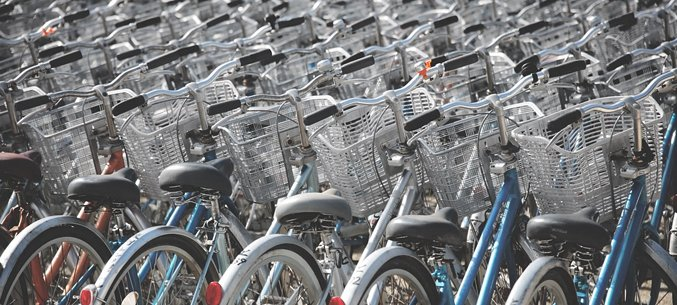 Moscow City & Region, Perm Territory Become Leaders of Bicycle Exports