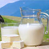 New Zealand's experience to be disseminated among Tyumen dairy farms