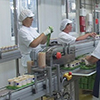 «Hochland» will expand its Production Lines in the Belgorod Region for RUR 1.4 billion