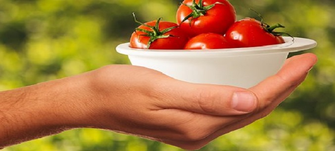Russia retains top spot as largest market for Turkish tomatoes