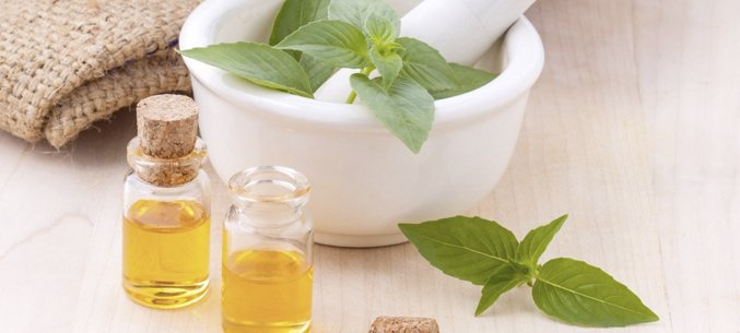 India's Supplies Of Peppermint Essential Oil To Russia Increases