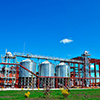 Chinese to construct grain mill in Rostov Region